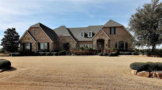 905 Amblewood Drive, Lucas, TX 75002 (MLS #14509852) :: The Property Guys