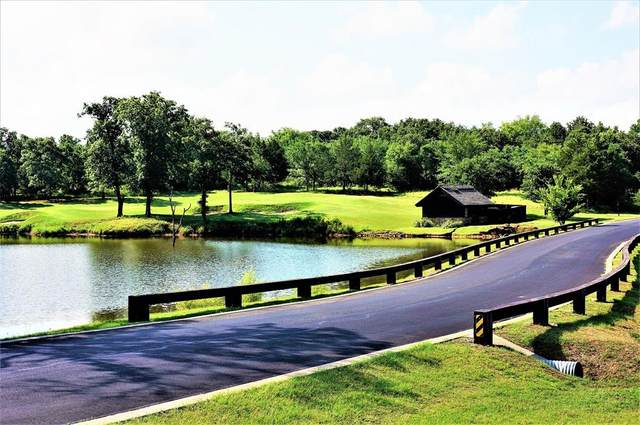 Lot 12B Castle Pines Circle, Gordonville, TX 76245 (MLS #14509996) :: Team Hodnett