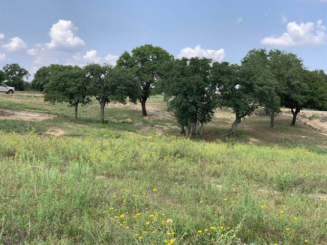 6778 Fm 89, Tuscola, TX 79562 (MLS #14510105) :: Real Estate By Design