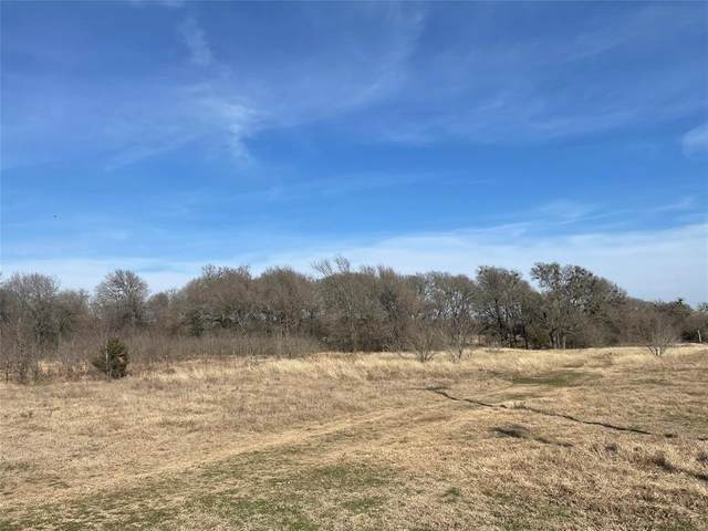 TBD Vzcr 3808 Tract 1, Wills Point, TX 75169 (MLS #14513511) :: The Hornburg Real Estate Group