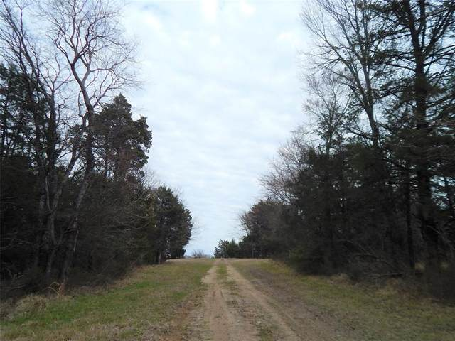 48 ac Cr 1130, Cumby, TX 75453 (MLS #14514254) :: Robbins Real Estate Group