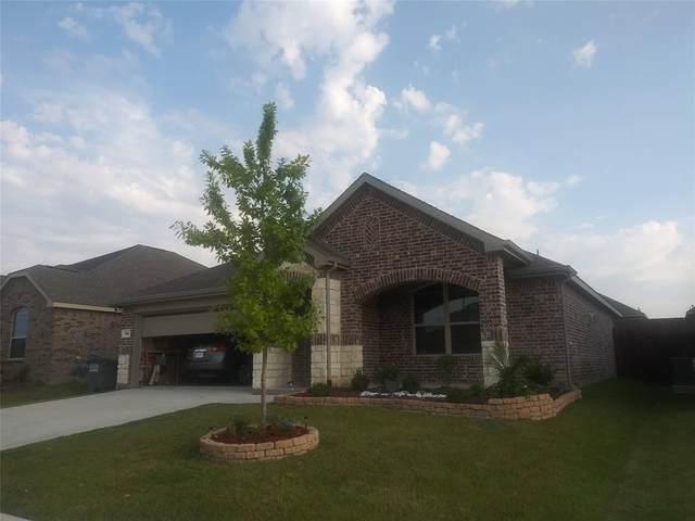 914 Evergreen Street, Princeton, TX 75407 (MLS #14514344) :: The Kimberly Davis Group