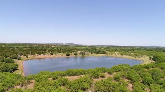 249 Private Road 2041, Santa Anna, TX 76878 (MLS #14515164) :: The Hornburg Real Estate Group