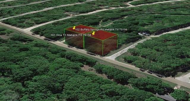 102 Buffalo Springs Road, Mabank, TX 75156 (MLS #14515306) :: Post Oak Realty