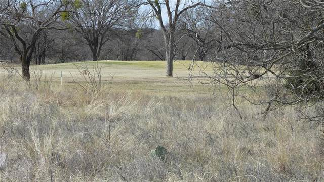 TBD Safe Harbor Drive, Brownwood, TX 76801 (MLS #14515657) :: The Kimberly Davis Group