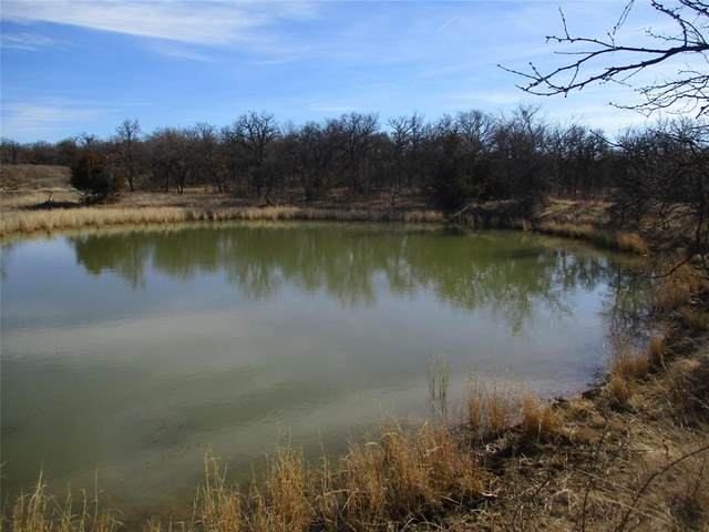 Tr. 5 Puddin Valley, Jacksboro, TX 76458 (MLS #14515790) :: The Star Team | JP & Associates Realtors