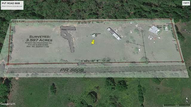 200 Pvt Rd 8608, Ben Wheeler, TX 75754 (MLS #14515948) :: The Property Guys