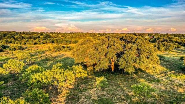 2017 Walter Joseph Way, Weatherford, TX 76088 (MLS #14516188) :: Robbins Real Estate Group