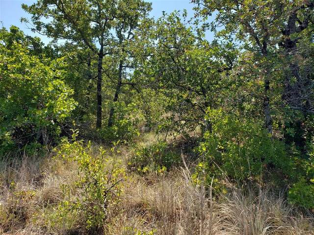 Lot 462 Mountain Pass Drive, Bowie, TX 76230 (MLS #14516344) :: Hargrove Realty Group