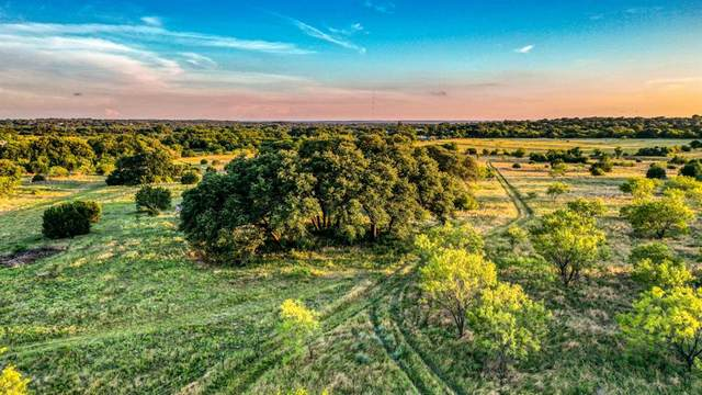 2020 Walter Joseph Way, Weatherford, TX 76088 (MLS #14516896) :: Robbins Real Estate Group