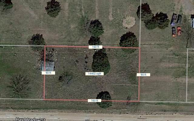 TBD Hay Meadow Street, Alvarado, TX 76009 (MLS #14517581) :: The Hornburg Real Estate Group