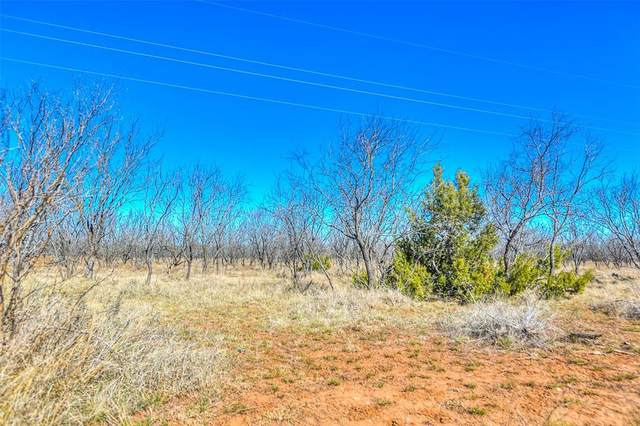0 County Rd 196, Ovalo, TX 79567 (MLS #14517642) :: Real Estate By Design