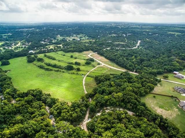 299 Mastodon Way, Weatherford, TX 76085 (MLS #14517649) :: Hargrove Realty Group