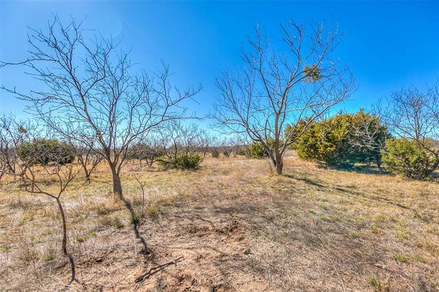 0 County Rd 194, Tuscola, TX 79562 (MLS #14518578) :: Real Estate By Design