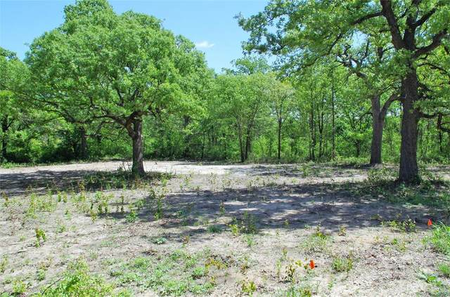 LOT 15 Timber Creek Drive, Stephenville, TX 76401 (MLS #14518759) :: Results Property Group