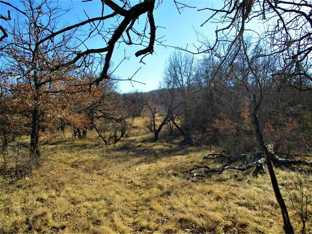58 Ac Burwick, Jacksboro, TX 76458 (MLS #14519135) :: The Mauelshagen Group
