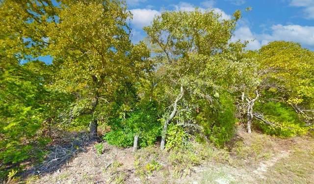 Lot 30 Opossum Creek, Murchison, TX 75778 (MLS #14519311) :: The Daniel Team