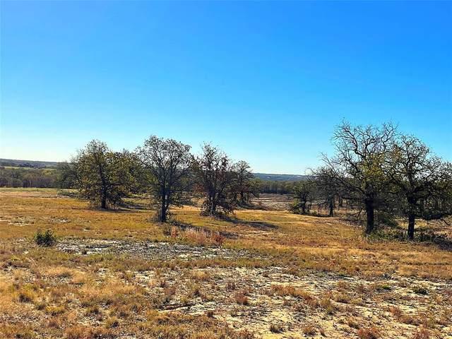 02 Dps Tower Road, Poolville, TX 76487 (MLS #14519632) :: Feller Realty