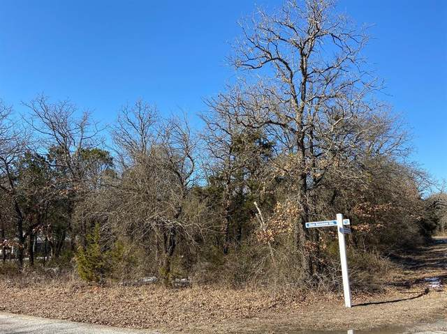 24018 Oak Shadow, Whitney, TX 76692 (MLS #14519665) :: Post Oak Realty