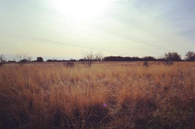 TBD County Road 376, Anson, TX 79501 (MLS #14520327) :: Real Estate By Design