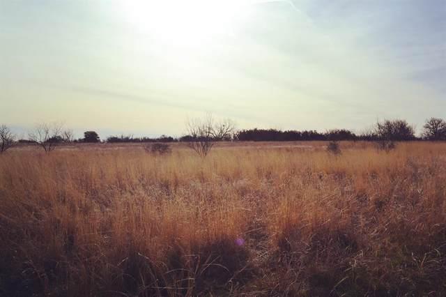 TBD County Road 376, Anson, TX 79501 (MLS #14520327) :: The Kimberly Davis Group
