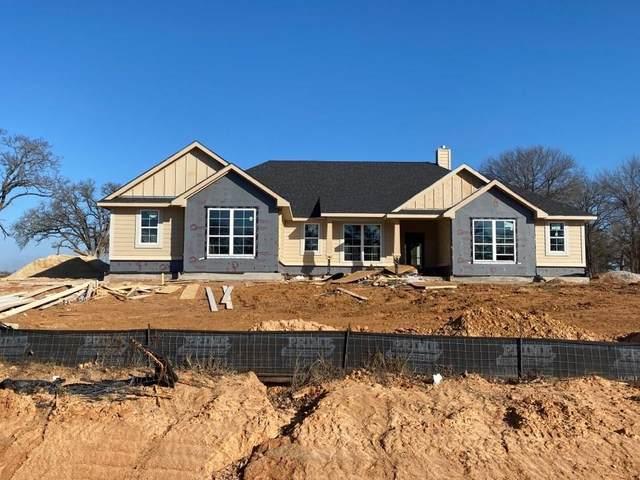 1115 Munn Road, Springtown, TX 76082 (MLS #14520390) :: Real Estate By Design