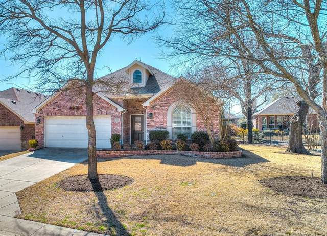 928 Cascade Drive, Fairview, TX 75069 (MLS #14520632) :: Lisa Birdsong Group | Compass