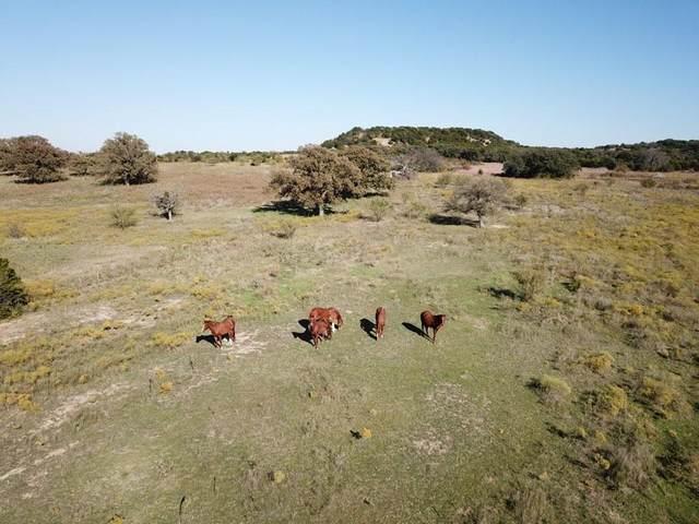 TBD Farm Road 3208, Stephenville, TX 76462 (MLS #14521111) :: The Kimberly Davis Group