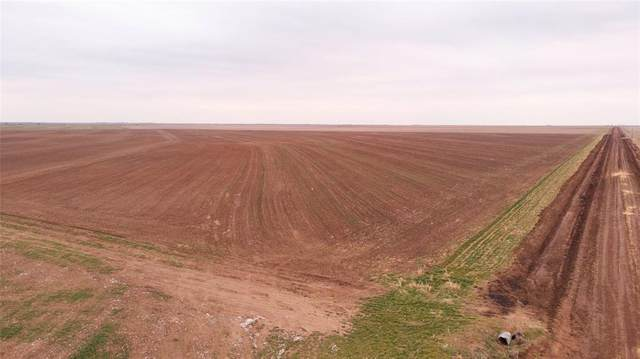 138 Acres Cr 115, Haskell, TX 79521 (MLS #14521205) :: Team Tiller