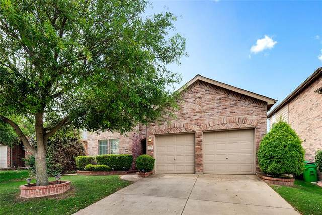 1728 Ringtail Drive, Little Elm, TX 75068 (MLS #14521500) :: Robbins Real Estate Group