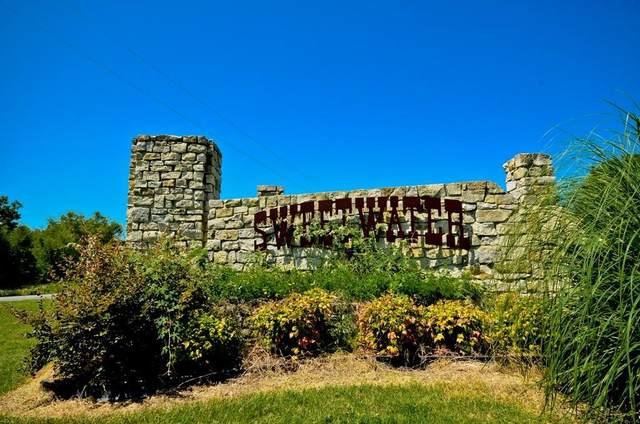 L 55 Arrowhead Point, Kerens, TX 75144 (MLS #14521834) :: The Mauelshagen Group