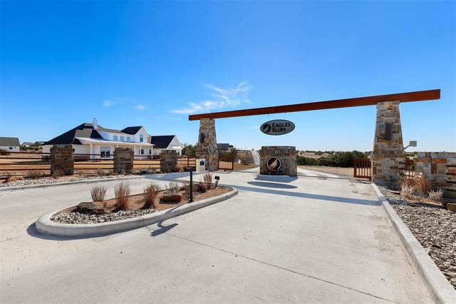 1158 Eagles Bluff Drive, Weatherford, TX 76087 (MLS #14521854) :: All Cities USA Realty