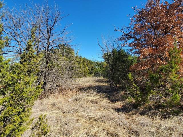 1788 County Road 102, Santa Anna, TX 76878 (MLS #14521947) :: Robbins Real Estate Group