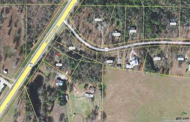 14531 State Highway 155 S, Tyler, TX 75703 (MLS #14522178) :: The Mauelshagen Group