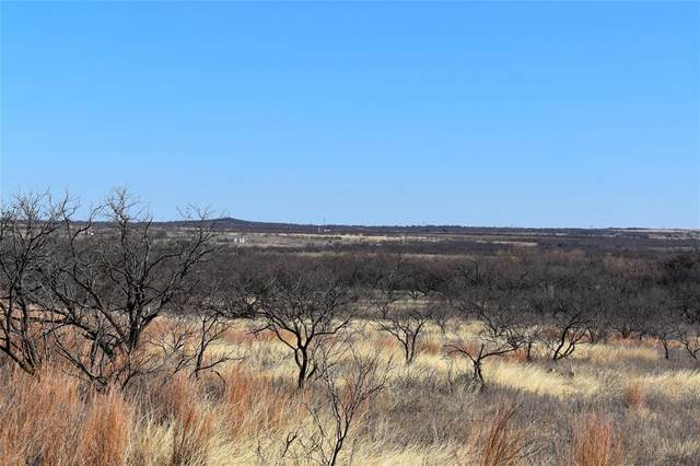 TBD Monument Road, Graham, TX 76450 (MLS #14522248) :: The Kimberly Davis Group