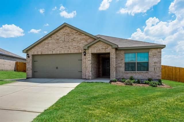 152 Cattlemans Creek West Road, Newark, TX 76071 (MLS #14522477) :: Trinity Premier Properties