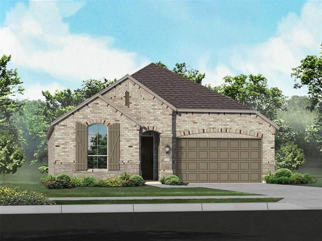 704 Highberry Drive, Anna, TX 75409 (MLS #14523599) :: Team Hodnett