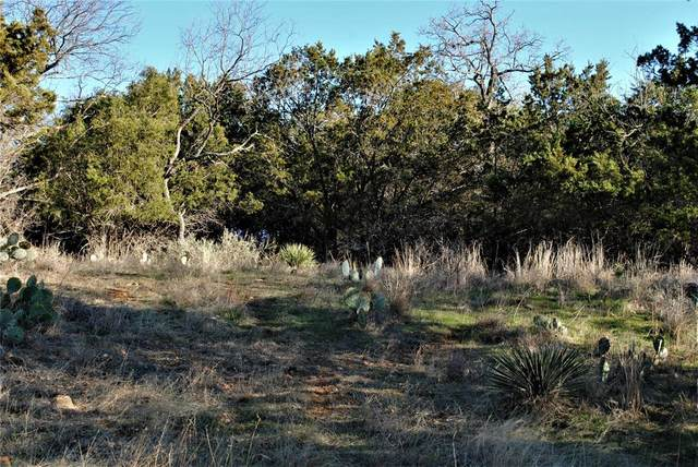 313 Cr 142, Burnet, TX 78611 (MLS #14523919) :: The Tierny Jordan Network