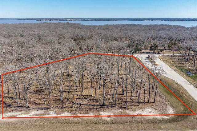 1 Vintage Shore Drive, Quinlan, TX 75474 (MLS #14524770) :: Results Property Group