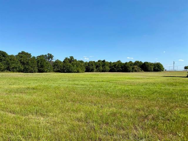 Lot 18 Timbers Circle, Poolville, TX 76487 (MLS #14525191) :: The Mauelshagen Group