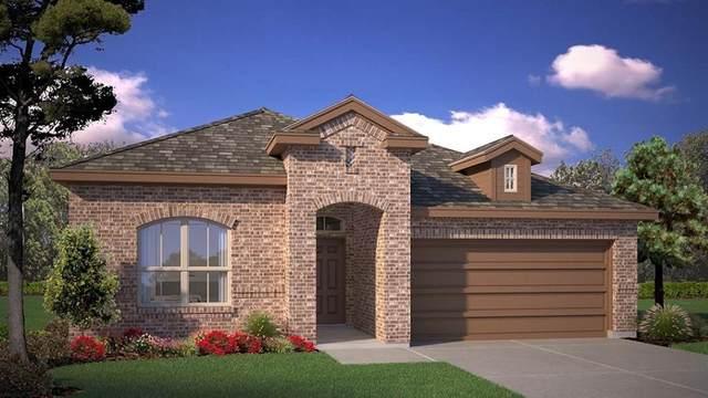 2044 Sun Star Drive, Fort Worth, TX 76052 (MLS #14526423) :: The Kimberly Davis Group