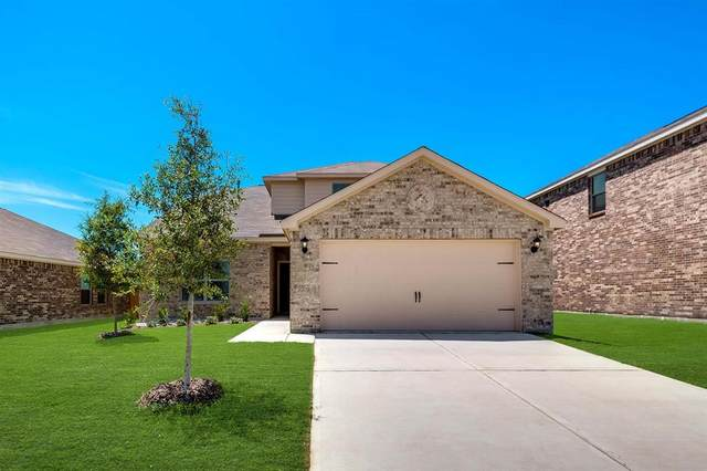 3079 Chillingham Drive, Forney, TX 75126 (MLS #14527423) :: The Kimberly Davis Group