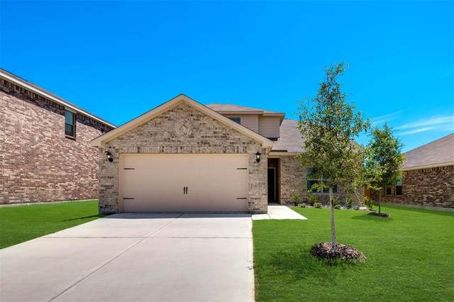 3001 Mccoy Road, Forney, TX 75126 (MLS #14527432) :: The Kimberly Davis Group