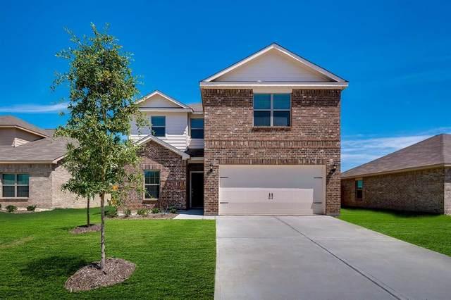 3011 Villegas Way, Forney, TX 75126 (MLS #14527448) :: The Kimberly Davis Group