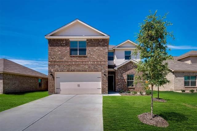 3101 Killam Road, Forney, TX 75126 (MLS #14527453) :: The Kimberly Davis Group