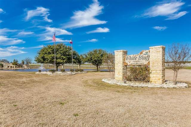 12030 Shady Creek Drive, Whitney, TX 76692 (MLS #14530007) :: The Chad Smith Team