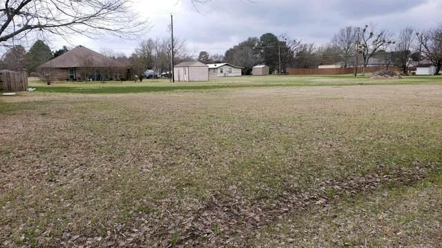 0 Meadow Heath, Gun Barrel City, TX 75156 (MLS #14530544) :: Potts Realty Group