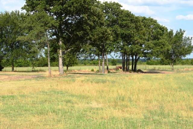 lot 1 Cr 4125, Campbell, TX 75422 (MLS #14531570) :: The Hornburg Real Estate Group