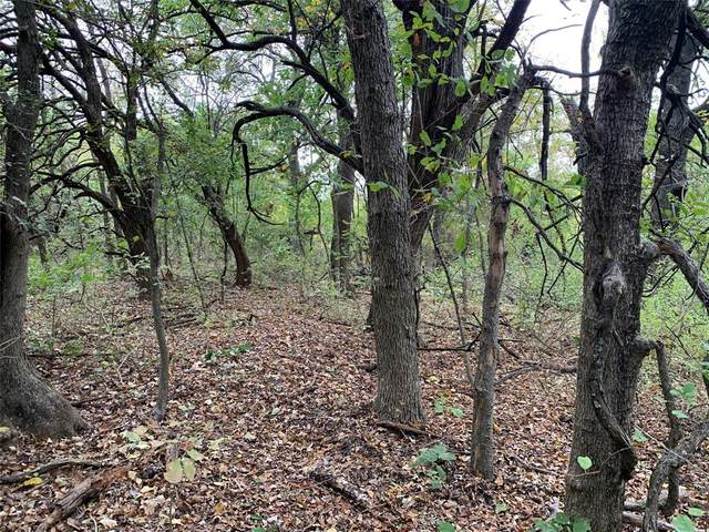 Lot 13 Franklin Road, Tom Bean, TX 75489 (MLS #14531629) :: Results Property Group