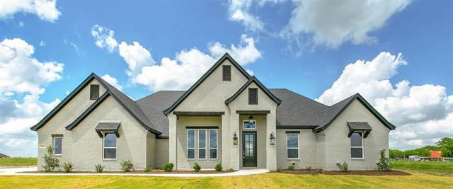 114 Southern Court, Springtown, TX 76082 (MLS #14531781) :: All Cities USA Realty